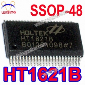 10 Pcs HT1621B SSOP-48 HOLTEK IC RAM Mapping 32X4 LCD Controller for I/O MCU